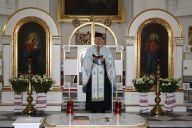 Свято провінції Покрова Пресвятої Богородиці у Польщі 2014_3